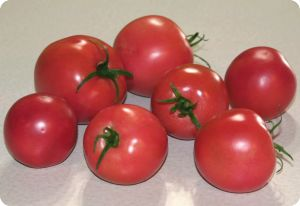 Tomato 'Eva Purple Ball'